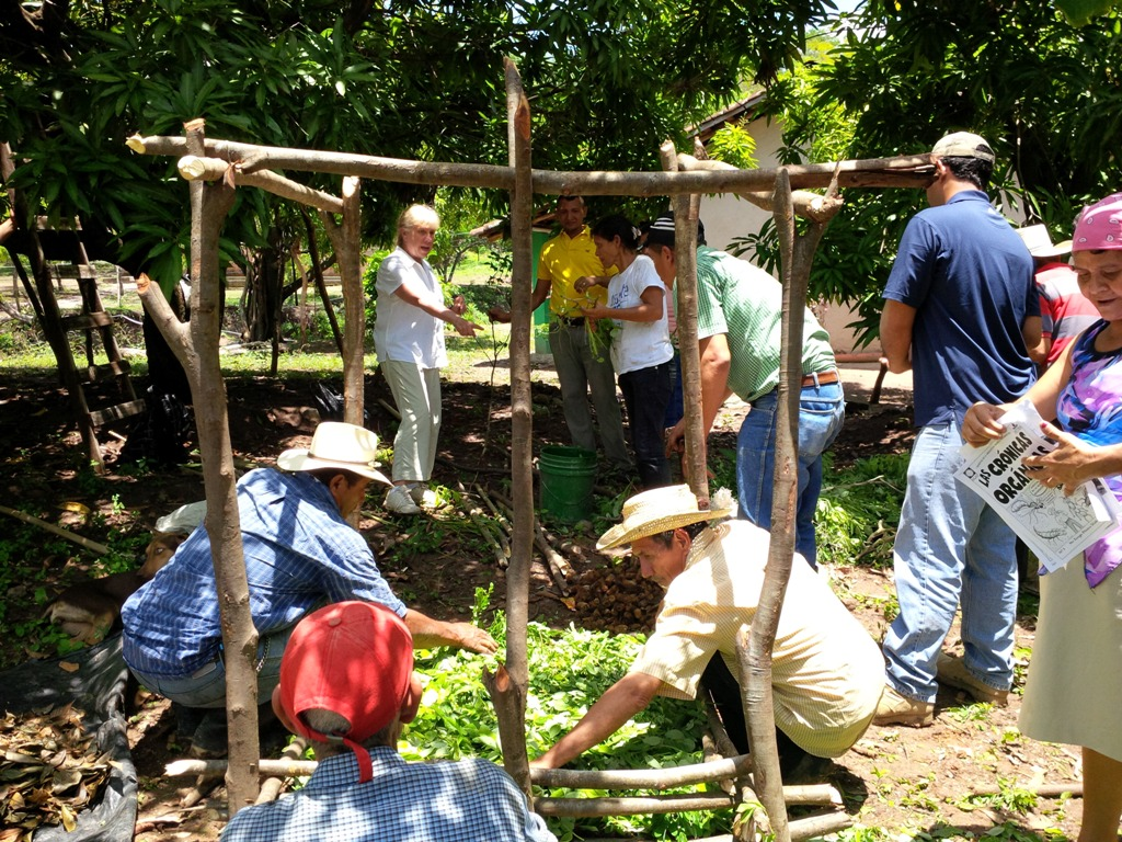 Image: CESO VA with Honduran clients at work