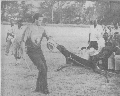 992-William-Grimmer-helps-train-police-dogs-on-a-CESO-assignment-in-Guyana.png